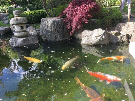 KyotoGardens4
