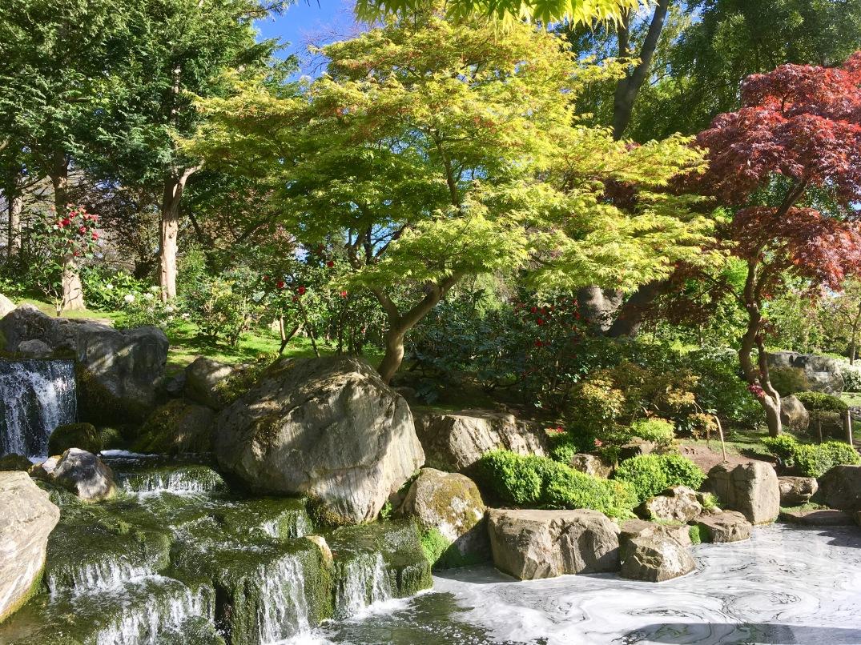 KyotoGardens5