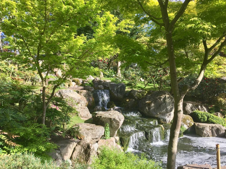 KyotoGardens8