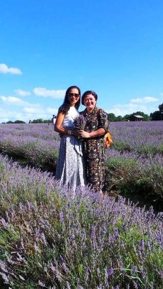 LavenderTrip_00