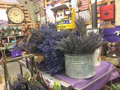 LavenderTrip_06